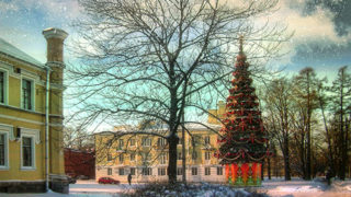 Новогодняя елка в Петергофе