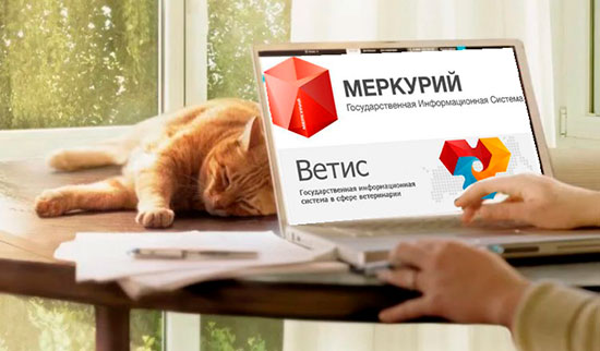 Электронная ветеринарная сертификация